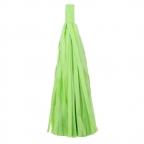Помпон-кисточка Салатовый 10 листов